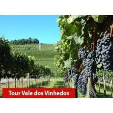 Tour Vale dos Vinhedos + Trem Maria Fumaça e Parque Epopeia Italiana