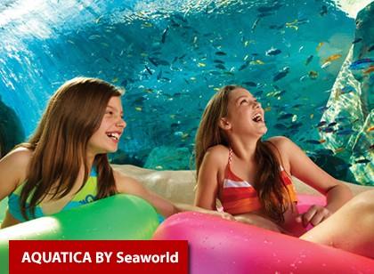 SeaWorld Parks (1 visita) + Dia inteiro de Plano de Alimentação (Ingresso Eletrônico)